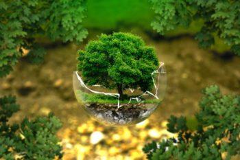kvalifikatsii-po-kursu-ekologicheskaya-bezopasnost