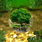 Повышение квалификации по курсу Экологическая безопасность