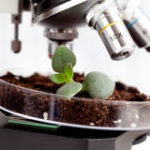 Повышение квалификации по курсу Методы отбора проб почвы