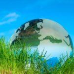 Профессиональная переподготовка по курсу Экология. Теория и методика преподавания в образовательной организации