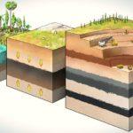 Профессиональная переподготовка по курсу Геология нефти и газа